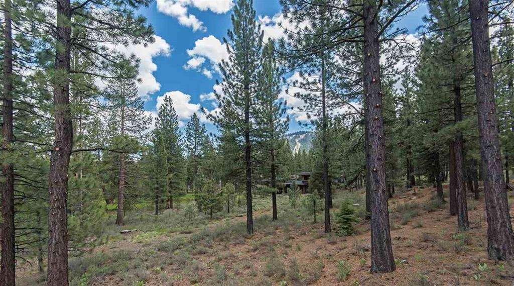 Open space in back of home | Truckee Golf Course Real Estate