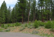 Gorgeous lot that backs to 115 acres of open space