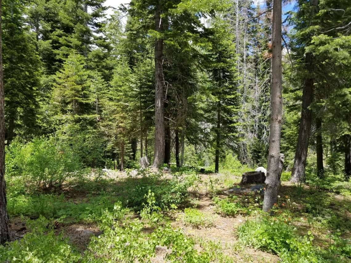 Level Lot in Alpine Meadows for Sale