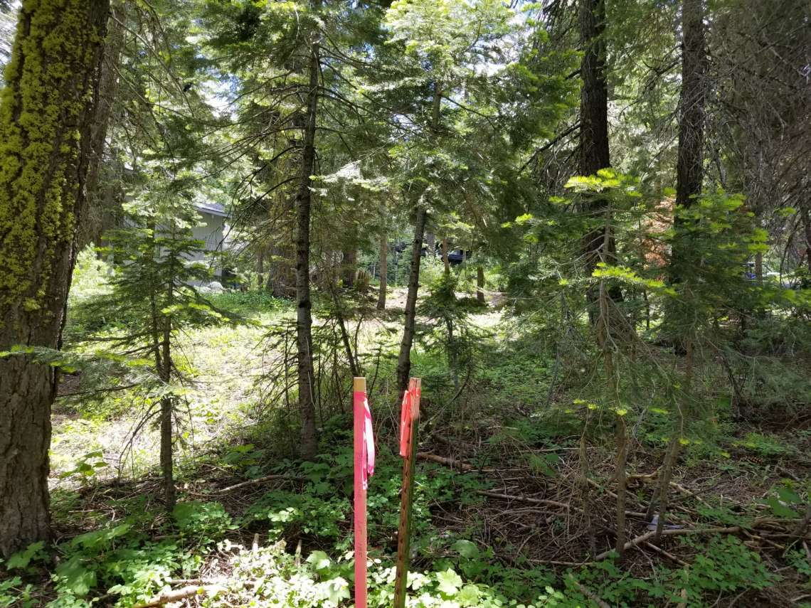 Vacant Land for sale with Plans in Alpine Meadows