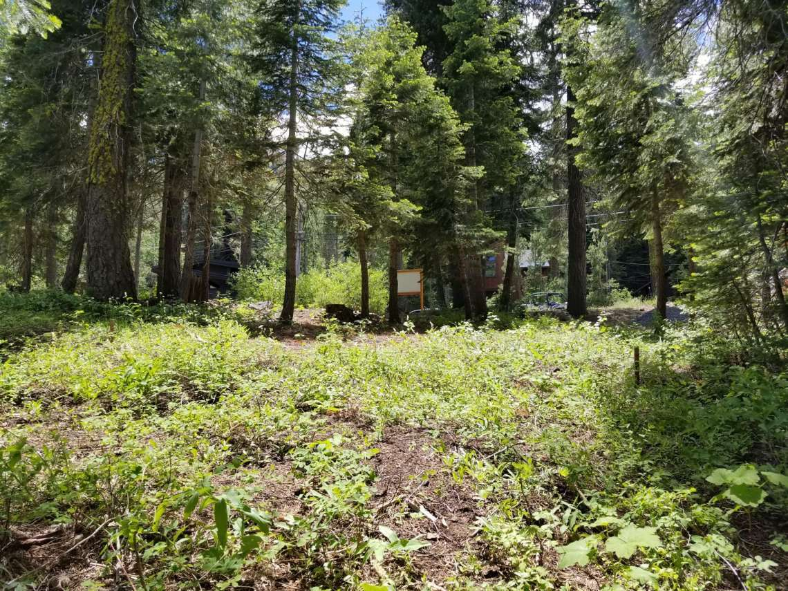 Lake Tahoe Ski Resort Land for Sale in Alpine Meadows