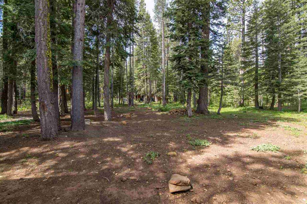 Real Estate in Truckee CA