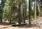 Lake Tahoe Land for Sale