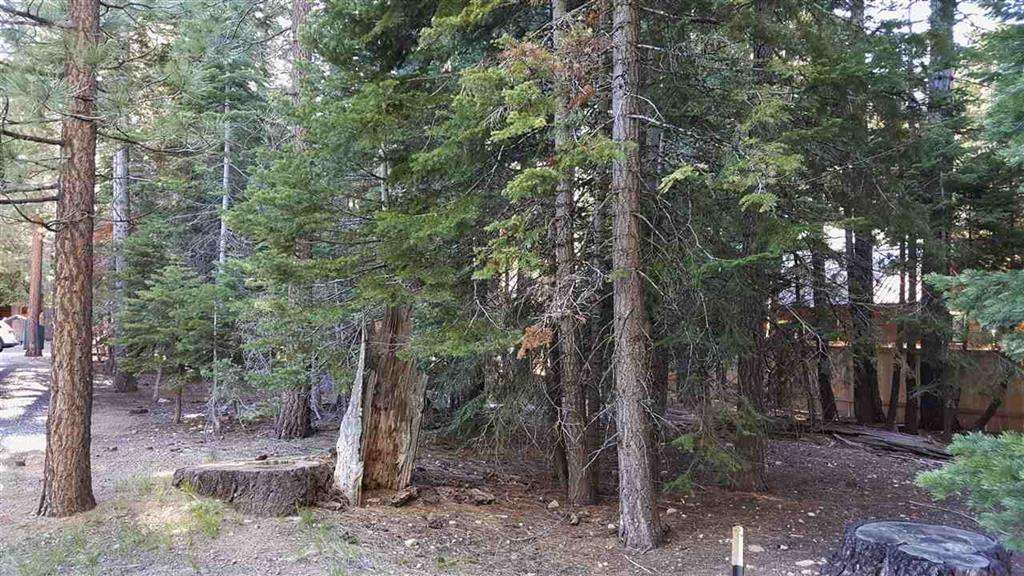 Tahoe Cedars Lot for sale