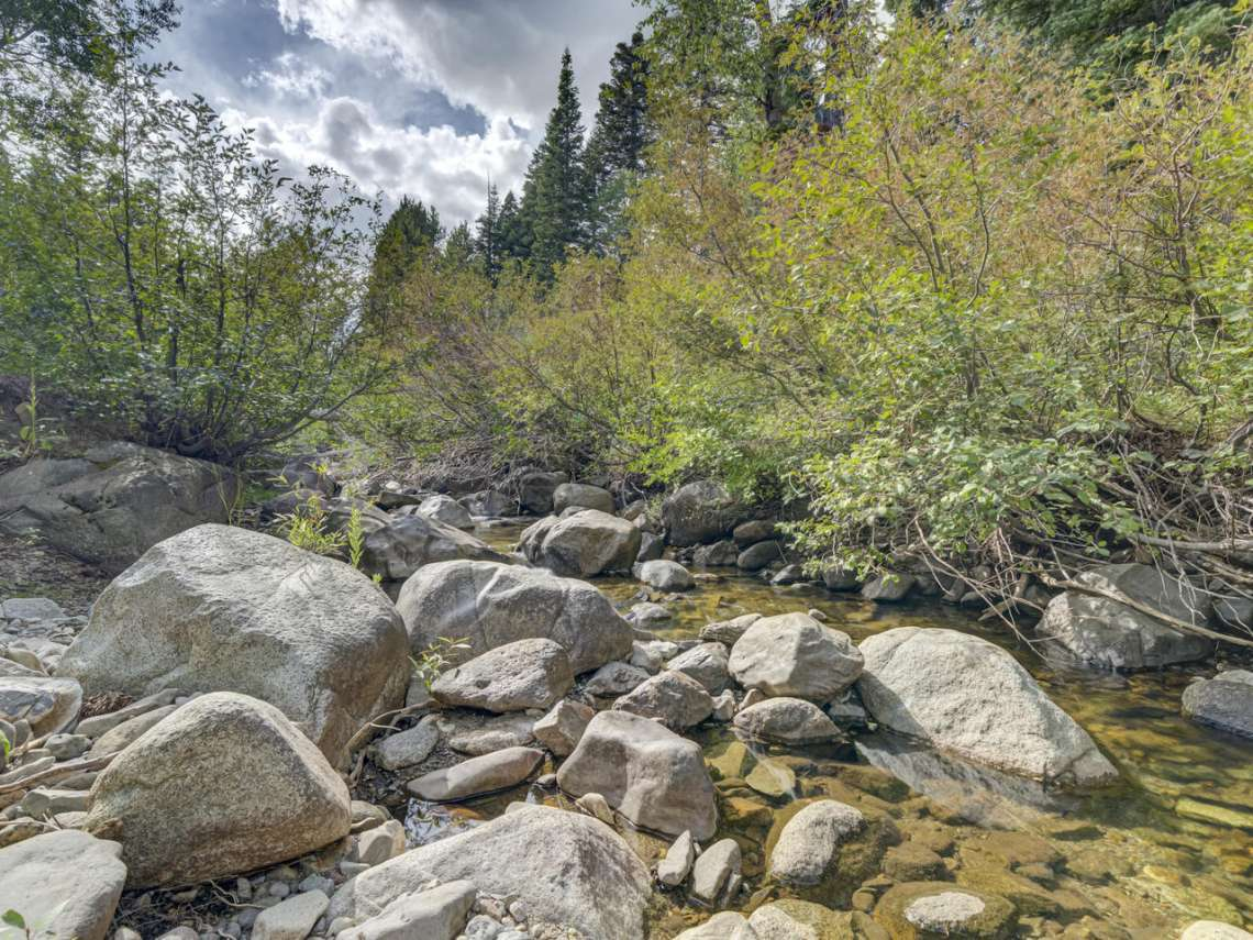 Alpine Meadows Homes for Sale | 1314 Mineral Springs Trail Creek