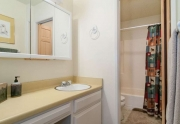 Alpine Meadows Real Estate   2090 Chalet Rd #15   Bathroom