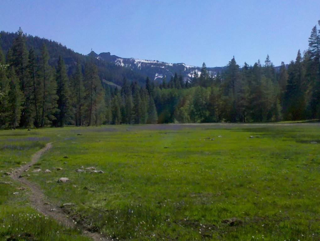 Alpine Meadows Homes