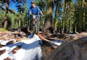 Dave Westall Riding his Mountain Bike in Tahoe City