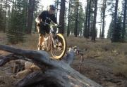 Truckee Realtor Dave Westall Mountain Biking