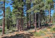 Truckee Lot for sale