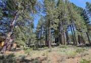 10769 Labelle Ct. | TGray's Crossing Lot