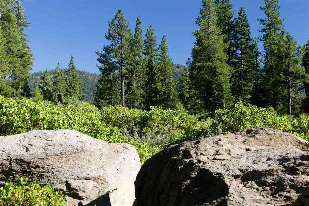 Truckee Land for Sale | 8601 Lloyd Tevis