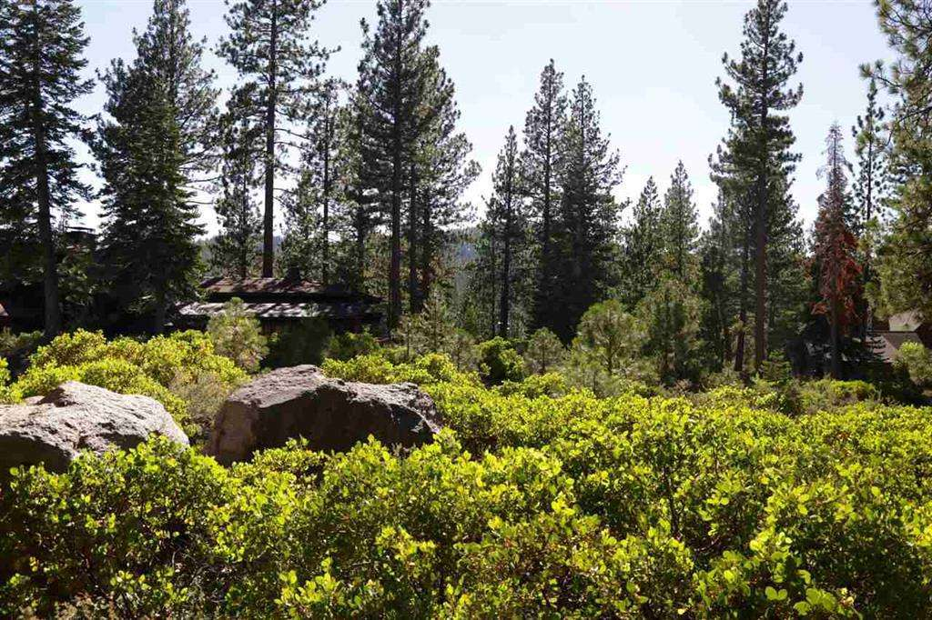 Lahontan Lot for Sale | 8601 Lloyd Tevis
