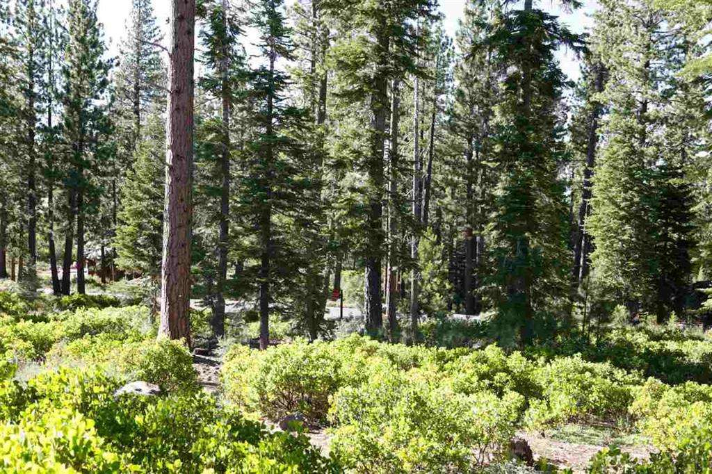 Truckee Lot for Sale | 8601 Lloyd Tevis