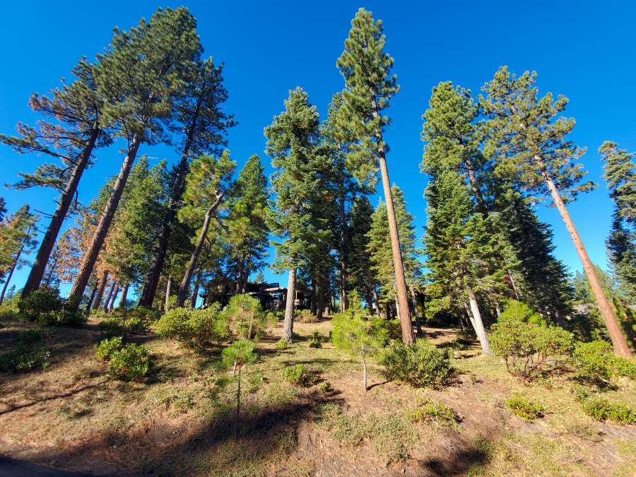 Lahontan Homesite - Truckee Golf Course Real Estate