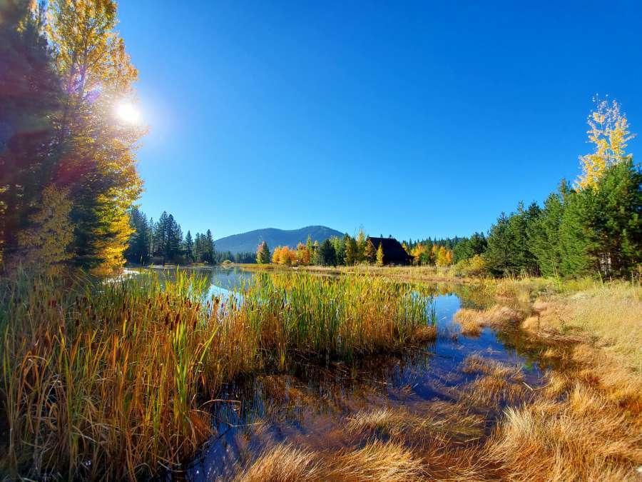 Lahontan Golf Course Real Estate - Autumn Foliage