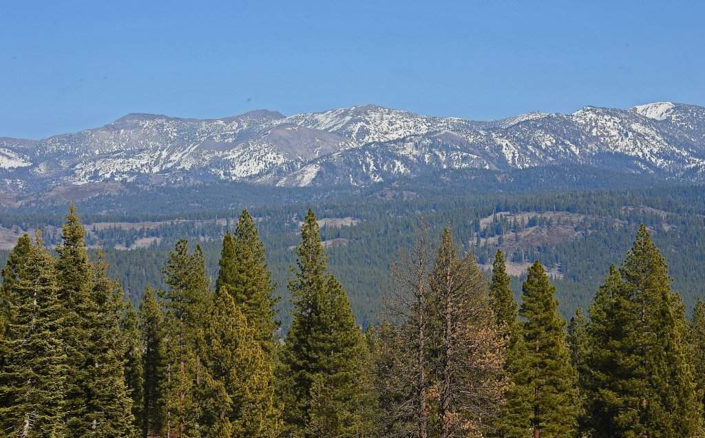 Views from Schaffer's Mill | Real Estate Near Lake Tahoe