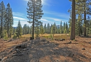 Schaffer's Mill Lots for Sale in Truckee, CA
