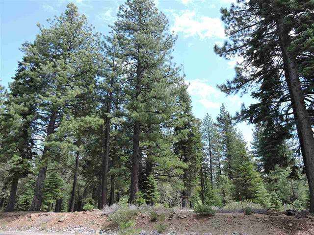 11853 Saddleback Dr. | Pine Forest Vacant Land in Truckee