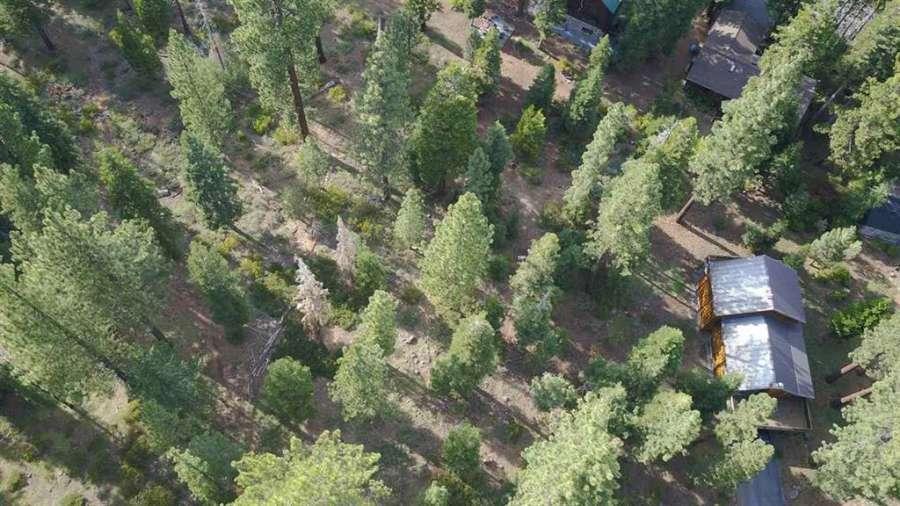 Sunny Tahoe Vista Lot | 7651 Pinedrop Lane