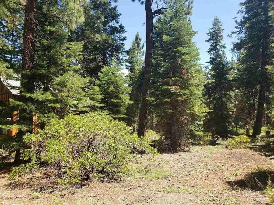 Magical Tahoe Vista Lot | 7651 Pinedrop Lane