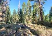 Lake Tahoe Land Sales and Real Estate