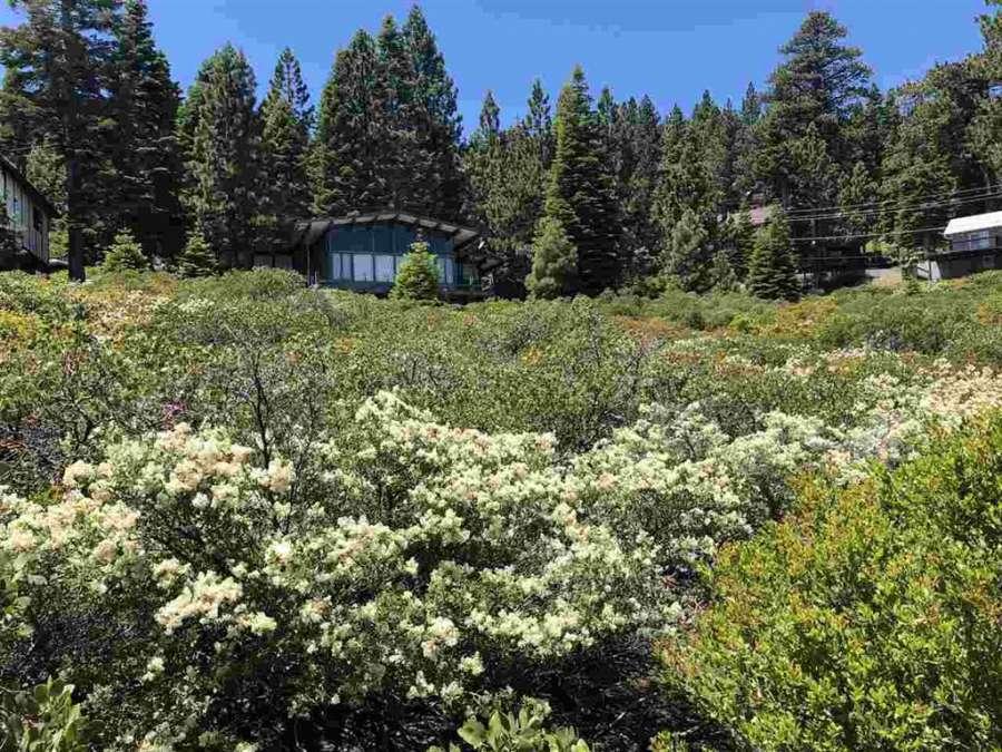 Tahoma Lake View Lot | 9120 Scenic Drive