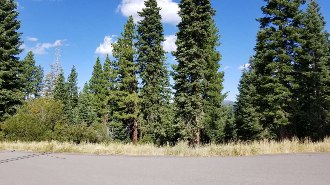 Truckee  Land for Sale  | 10530 Aspenwood Rd |   View of Truckee Lot for Sale