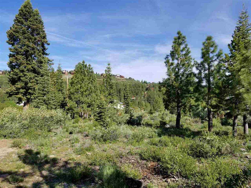 Truckee Lot for Sale | 13466 Hillside Drive