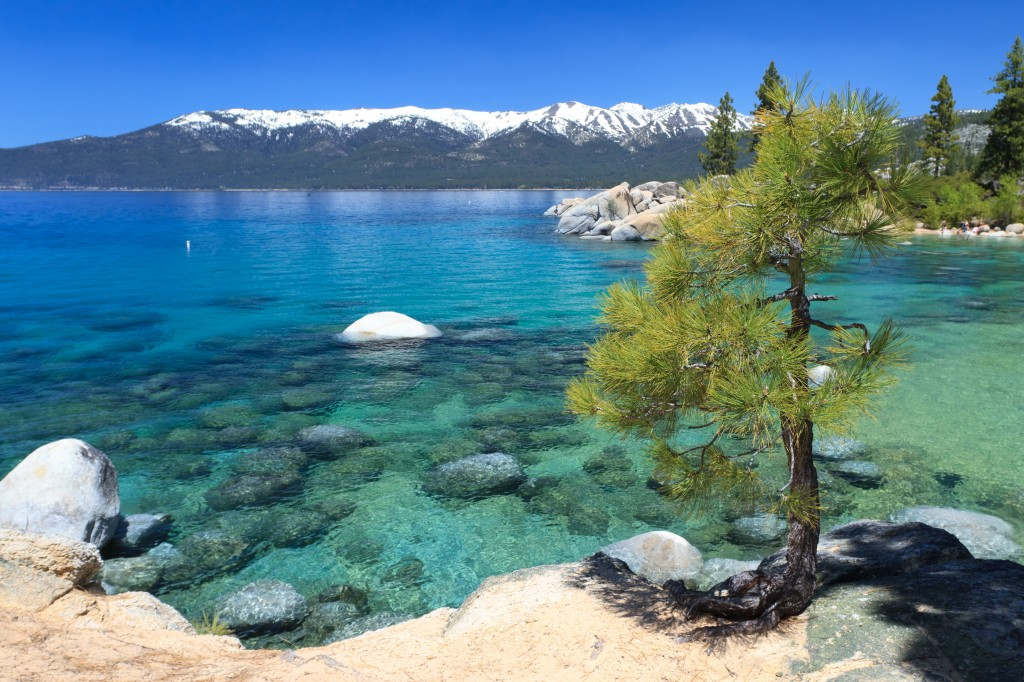 Spring in Lake Tahoe