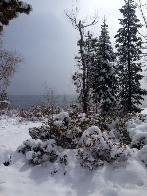 Image of snowy West Shore Lake Tahoe for 5 Feet of Fresh Snow in Lake Tahoe 2014 blog post