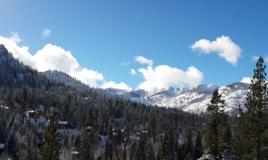 Alpine Meadows from Juniper Mountain