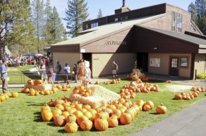 Image of Tahoe Donner Fall Festival for Top Fall Events in North Lake Tahoe blog post