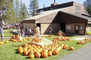 Tahoe Donner Fall Festival