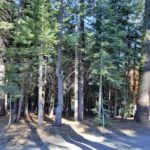 7279 3rd Avenue | Tahoe Cedars Lot for Sale