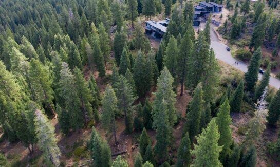 Beautiful Truckee Lot for Sale