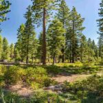 Picturesque Lahontan Homesite